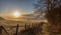 Sunny Path