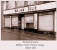 William Tulip