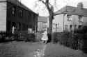1950 Eveline