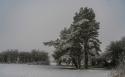 Snow_29Dec_2017 (19)