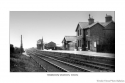 trimdonstationcollection_a